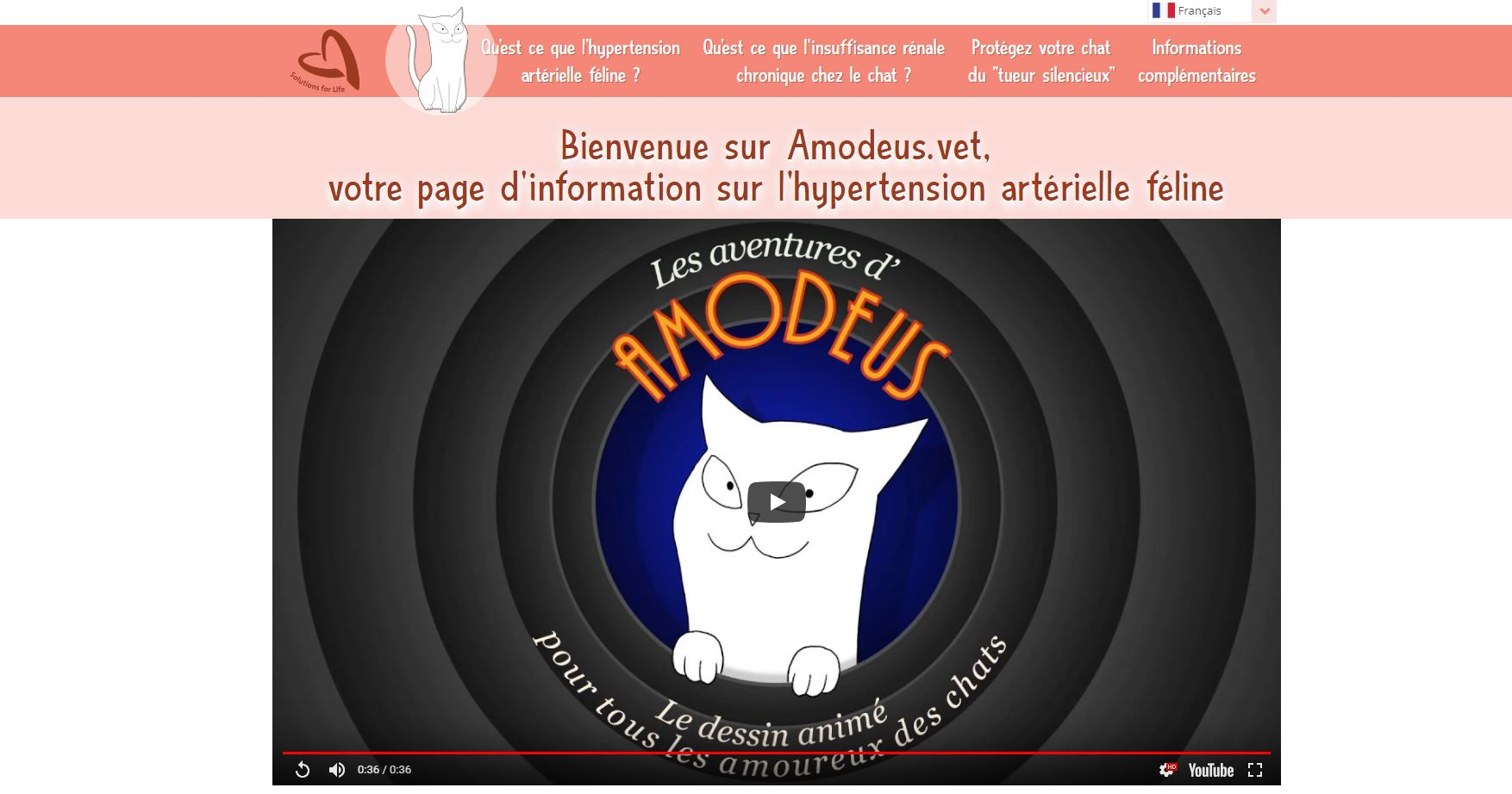 HYPERTENSION DU CHAT : ATTENTION !